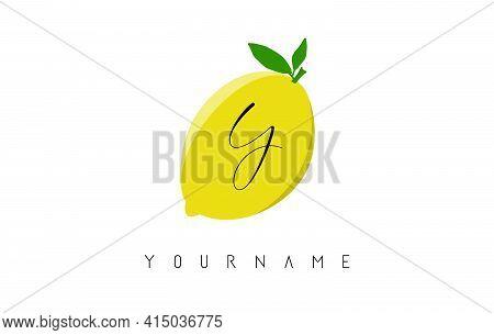 Handwritten Y Letter Logo Design With Lemon Background. Creative Vector Illustration With Lemon And