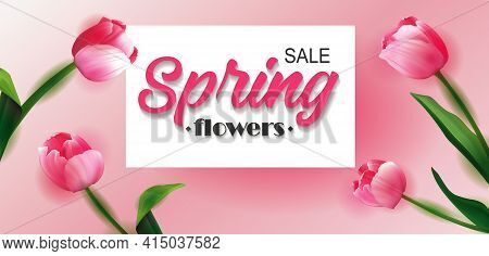 Spring Big Sale Card With Tulips And Serpentine. Spring Sale Cheerful Tulip Design. Eps 10 Vector