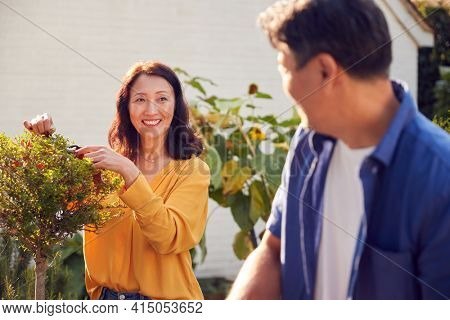 Close Up Of Mature Asian Couple At Work Watering And Pruning Plants In Garden At Home