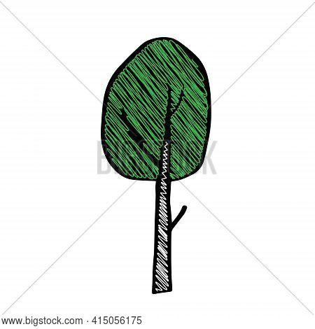 A Black Outline Hand Drawing Vector Illustration Of A Deciduous Birch Tree With Green Scribble Fresh