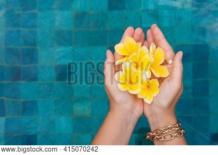 Female Hand With Frangipani On The Background Of A Blue Pool.
