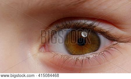 Highly Detailed Macro Shot Opening, Closing Brown Color Pigmentation Eyes Of Little Girl. Human Eye