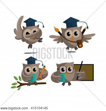 Owl Bird Template Design Smart Education With Owl Symbol  Set