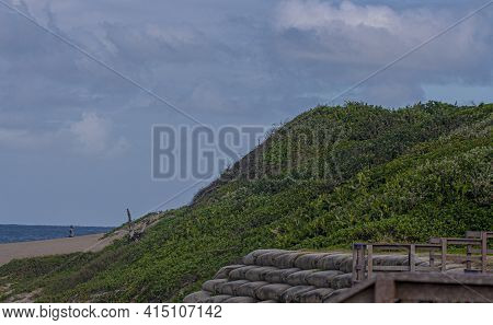 Large Dune Covered In Vegetation With Sand Bags In Front