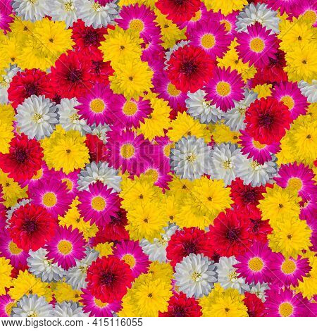 Floral Print Collage, Seamless Floral Pattern. Bright Colorful Flowers. Decorative Elements For Desi