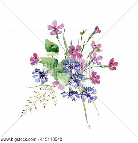 Watercolor Bouquet Of Wild Flowers Carnation And Cornflower