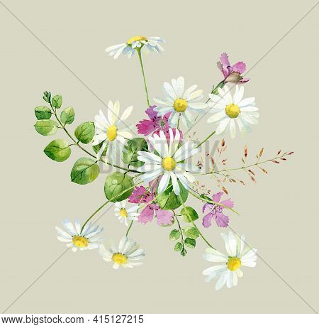 Watercolor Bouquet Of Wild Flowers Carnation And Chamomile