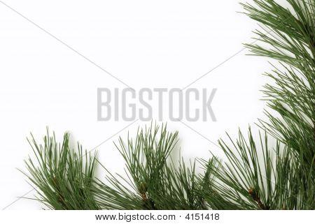 Christmas Border Element