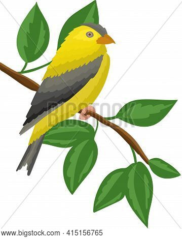The Yellow Bird Sits On A Tree Branch. Goldfinch In A Natural Environment. Branch Of A Tree With Lea