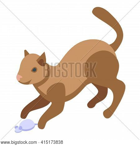 Playful Home Cat Icon. Isometric Of Playful Home Cat Vector Icon For Web Design Isolated On White Ba