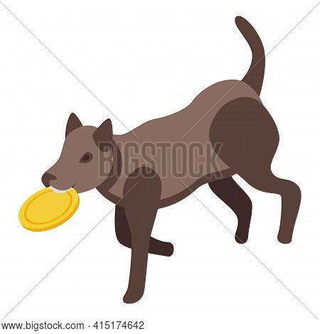 Playful Dog Toy Icon. Isometric Of Playful Dog Toy Vector Icon For Web Design Isolated On White Back