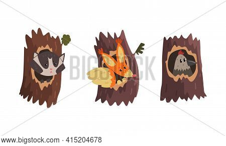 Cute Animals And Birds Living In Tree Hollows Set, Raccoon, Squirrel, Bird Peeking Out Of Hollow Car