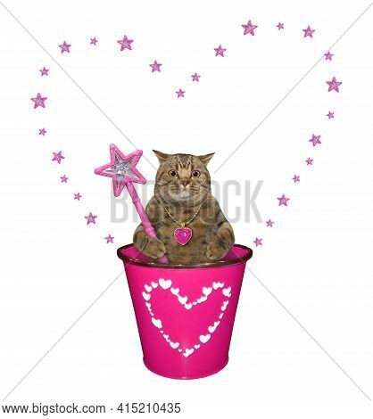 A Beige Cat With A Magic Wand  Is In A Pink Pail. White Background. Isolated.