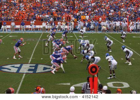 Gators Kentucky Football Sports Florida Field Gainesville