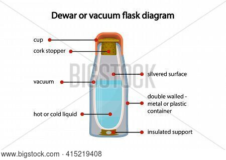 Dewar Or Vacuum Flask Fully Diagram Isolated On White Background. Cross Section Cut Away View Of A T