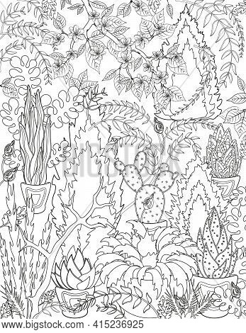 Coloring For Adults. Weaving Plants, Cacti And Flowers.