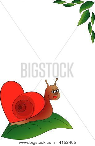 Snail With Heart