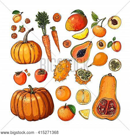Orange. Vector Food. Colored Vegetables And Fruits On A White Background. Pumpkin, Persimmon, Papaya