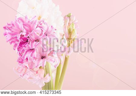 Elegant Tender Pink Hyacinth Bouquet For Mothers Day Closeup With Sun Beam And Sun Flare Flare On Pi