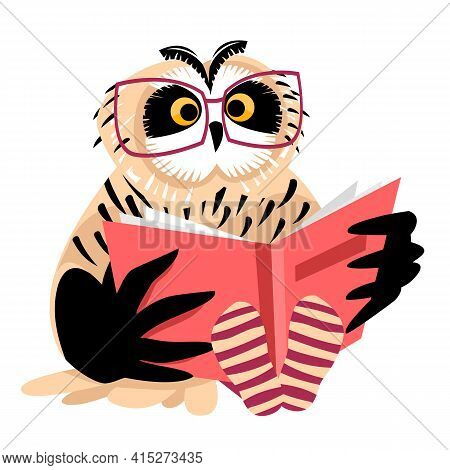 An Owl With Glasses. The Owl Is Reading A Book. Vector Illustration