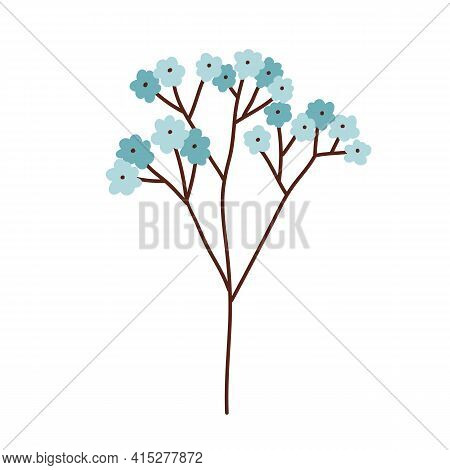 Beautiful Branch Of Blossomed Spring Forget Me Not Flowers With Soft Gentle Buds. Romantic Blooming