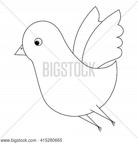 Bird. A Cute Chick Flaps Its Wings. Sketch. Vector Illustration. Coloring Book For Children. The Lit