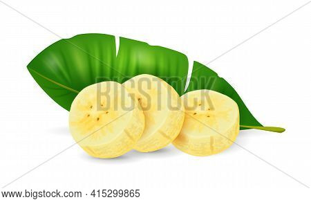 Banana Fruit - Exotic Fruits Collection, Realistic Design Vector Illustration Close-up