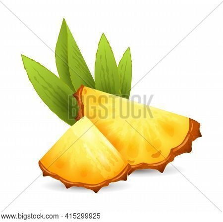 Pineapple Fruit - Exotic Fruits Collection, Realistic Design Vector Illustration Close-up