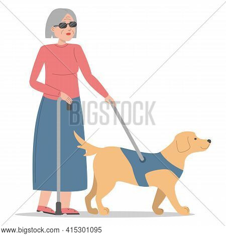 Blind Woman Walking With A Dog Vector Isolated