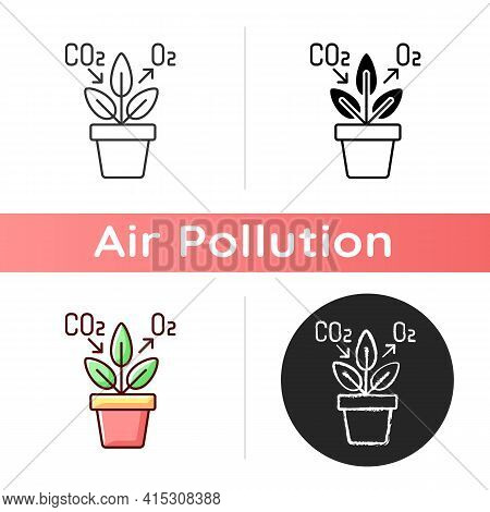 Air Purifying Plant Icon. Plants Clean The Air Through The Process Of Photosynthesis. Oxygen Level I