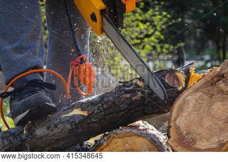Men Sawing Apple Tree With A Chainsaw In His Backyard. Worker Pruning Tree Trunk In The Garden