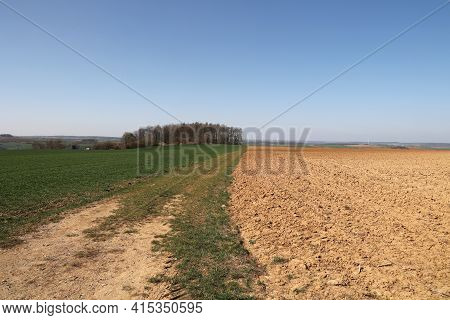Spring Landscape With Arable Land And Meadows