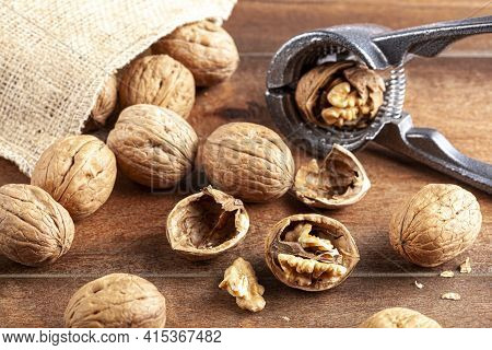 Angled Selective Focus Image Of Walnuts In Shell Scattered Out Of A Vintage Burlap Sack Onto Wooden
