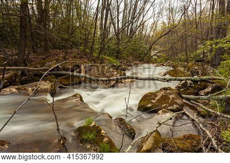 A Forest Scene In West Virginia With A Mountain Spring Water Stream Is Descending Down The Appalachi