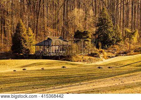 A Sunny Afternoon Scene Inside Brookside Gardens Within The Wheaton Regional Park Of Maryland With L