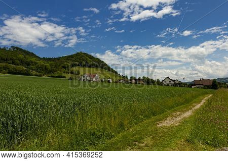A Wheat Or Barley Field In The Central Plateau Of Switzerland. There Is An Unpaved Road By The Growi
