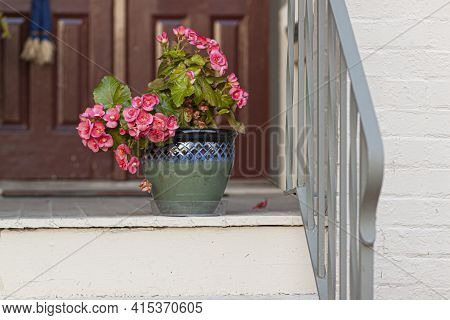 Pink Geranium Flowers In A Decorative Polished Clay Pottery Pot In Front Of The Entrance Of A Vintag