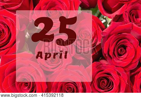 April 25th. Day Of 25 Month, Calendar Date. Natural Background Of Red Roses. A Bouquet Of Dark Red R