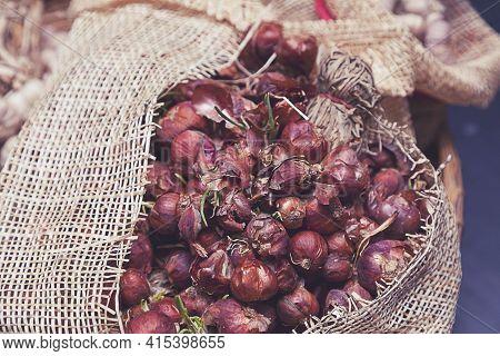 Organic Garlic. Fresh Garlic Cloves And Garlic Bulb On Rustic Background.