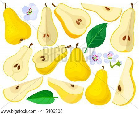 Pear Vector Cartoon Set Icon. Vector Illustration Fruit On White Background. Isolated Cartoon Set Ic