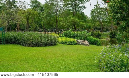 Back And Front Yard Cottage Garden And Smooth Green Grass Lawn, Flowering Plant And Evergreen Trees