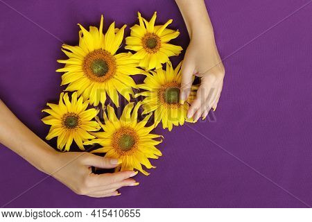 Yellow French Manicure On A Girl With Sunflowers.