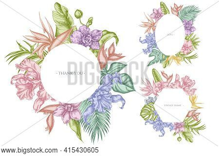 Floral Frames With Pastel Monstera, Banana Palm Leaves, Strelitzia, Heliconia, Tropical Palm Leaves,