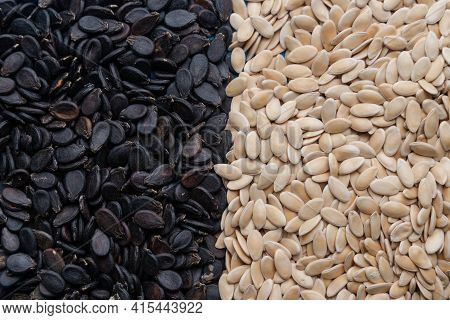 Watermelon Seeds.various Varieties Of Watermelon Seeds On A Blue Background