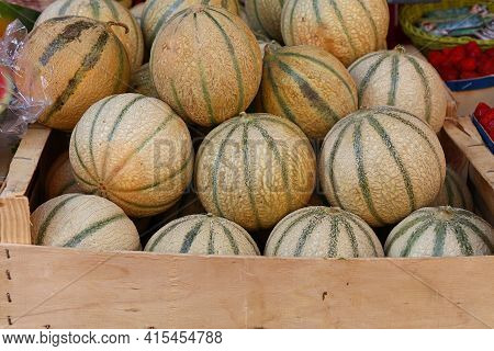 Close Up Whole Fresh Ripe Summer Cantaloupe Melons On Retail Display Of Farmers Market, High Angle V
