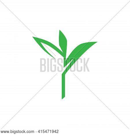 Seedling Sprout Symbol On White Backdrop. Design Element