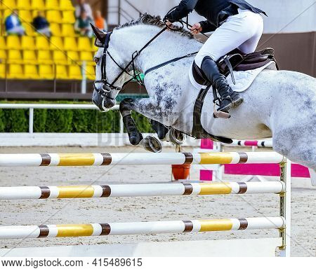 Horse And Rider In Uniform Performing Jump At Equestrian Sport Show Jumping Competition. Beautiful W