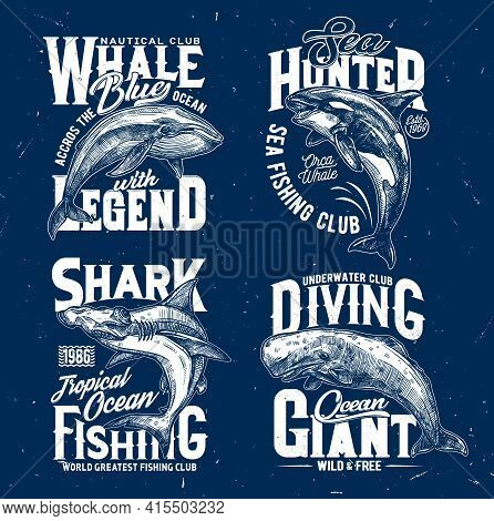 Trophy Fishing And Ocean Diving Club T-shirt Print Template. Blue Whale, Orca Or Killer Whale And Ha