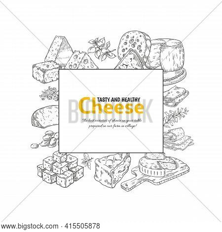 Cheese Label. Dairy Products Hand Drawn Banner. Pieces Or Slices Of Maasdam And Parmesan. Square Fra