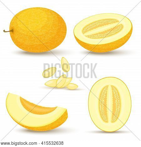 Melon Vector Set. Whole, Sliced, Half Of A Yellow Musbuzz, Isolated On White Background. Vector Illu